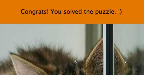 Solved puzzle on desktop